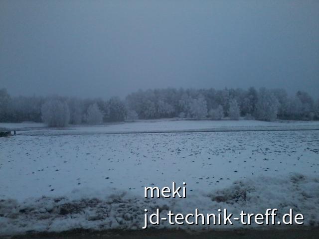 hoffentlich macht der Schnee den Borkenkäfer alle