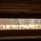 Einer meiner Bienenstöcke bei mittlerem Betrieb