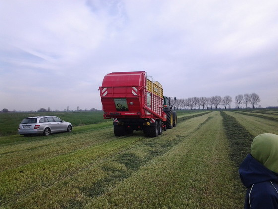 Silage 2014